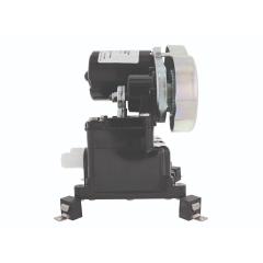 Jabsco 36600-0010 36600 Belt Driven Diaphragm Bilge Pump 24 Volt