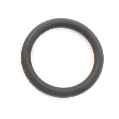 Piston O-Ring