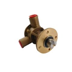 Bronze Raw Water Pump